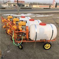 手推式喷雾器视频 养殖场打药机厂家