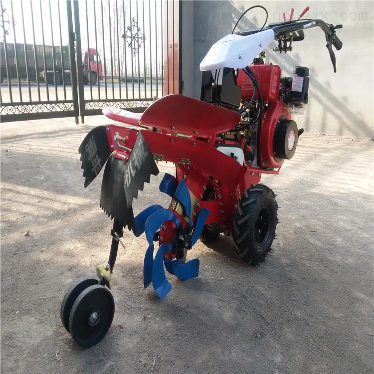 RZ-KG-蔬菜大棚开沟机 大葱培土机 186田园管理机