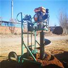 FX-WKJ手推式栽树钻眼机 绿化造林挖坑机直销