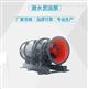 10KV泵站用潜水贯流泵