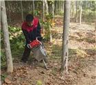 小型多用型链条挖树机 黑土地起苗移树机