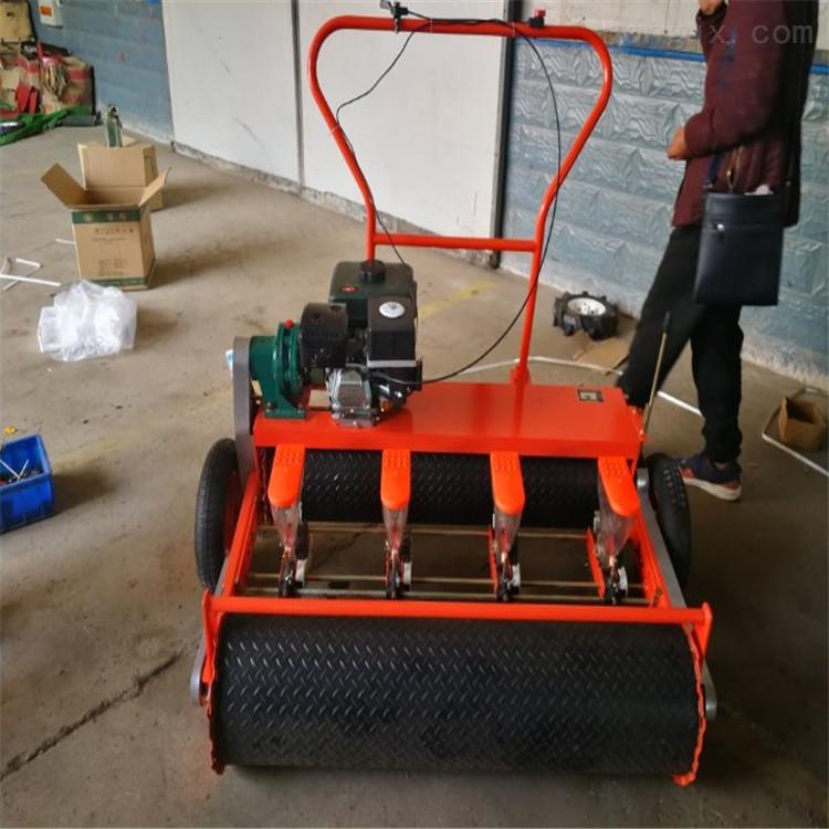 RZ-BZ-小粒种子精播机 汽油款蔬菜播种机