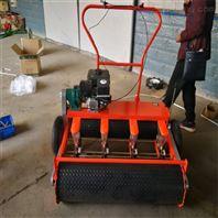 辣椒蔬菜精播机 一年四季适合种蔬菜播种机