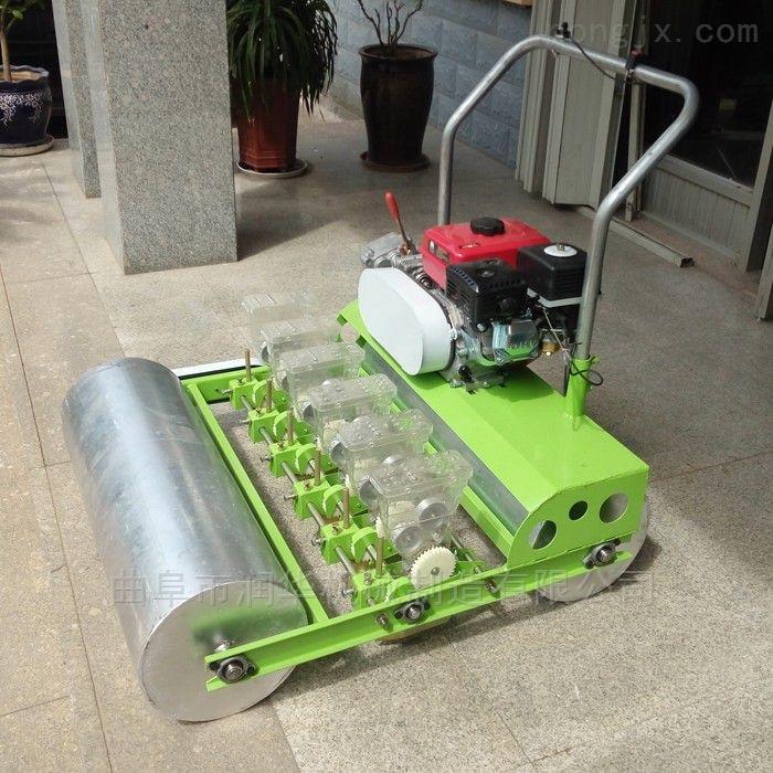 汽油手推式上海青播种机 小颗粒种子精播机