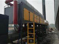 吸附浓缩-蓄热式催化燃烧废气处理设备ㄨ厂家