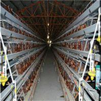 热镀锌鸡笼 冷镀锌养殖可定制笼子
