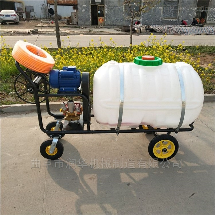 畜牧养殖消毒防疫喷雾器 果树林打药喷雾机