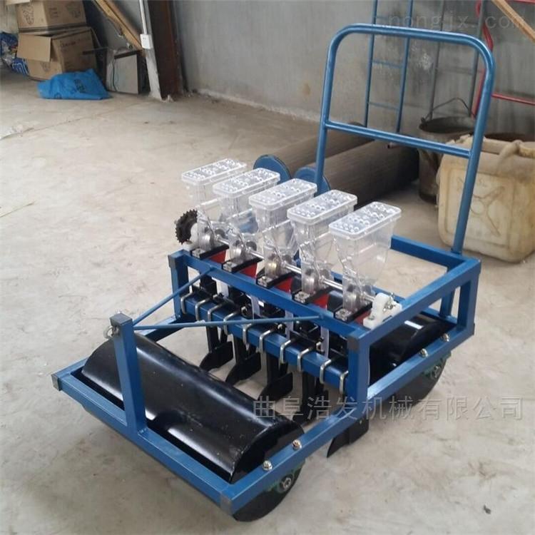 电瓶带动蔬菜播种机 农民免剔苗精播机型号