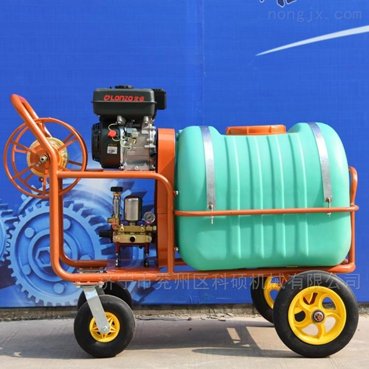 高压喷雾机200L公园杀虫消毒喷药设备