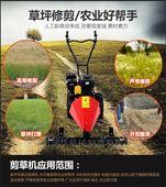 球場草坪修剪割草機 輕便耐用的本田草坪機