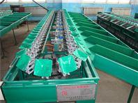 粑粑柑选果机 柑橘等水果分大小的机器厂家