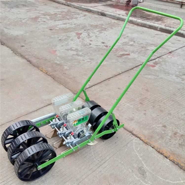 人力蔬菜电动播种机 手推式汽油蔬菜精播机