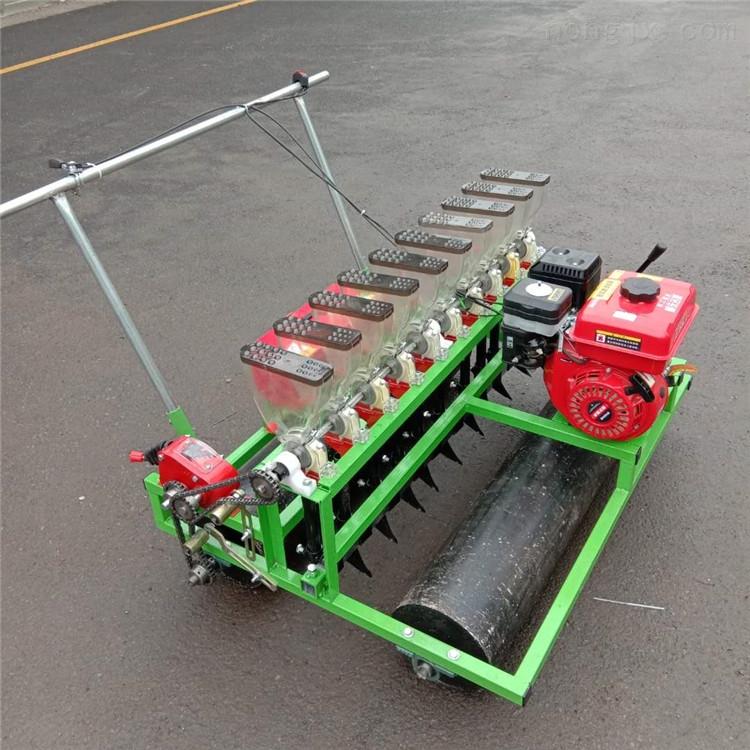 汽油自走式蔬菜播种机 手推多行蔬菜精播机