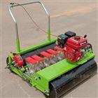 JX-BZ大棚菠菜手推精播机 苜蓿草播种机厂家