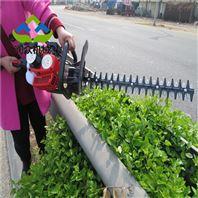 公路绿化带修剪机 手持多功效绿篱机视频