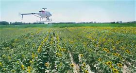 CD-15无人机喷洒农药