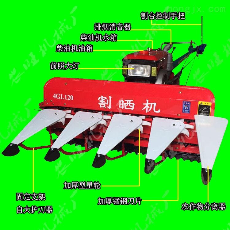 芦苇玉米秸秆收割机 高效率玉米割晒机