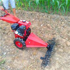 SL JCJ-80果园专用汽油自走式剪草机