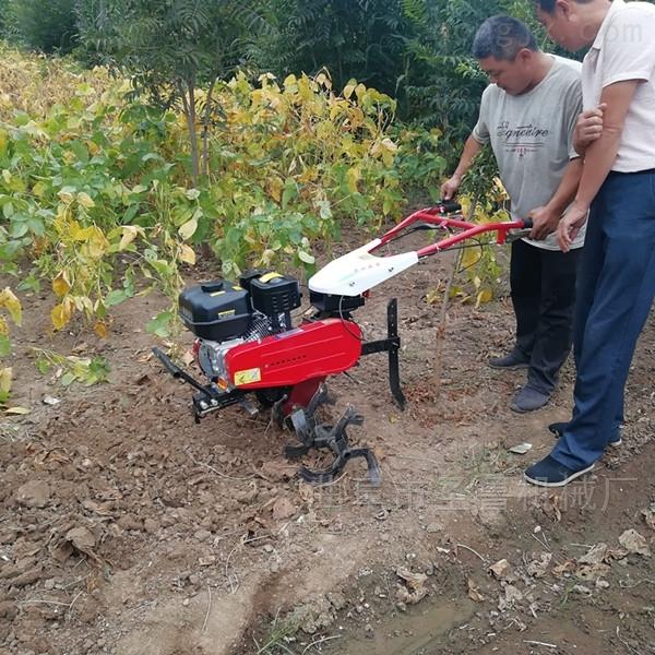 大棚菜园专用汽油微耕机