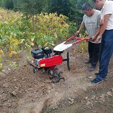 SL WGJ大棚专用7.5马力汽油微耕机