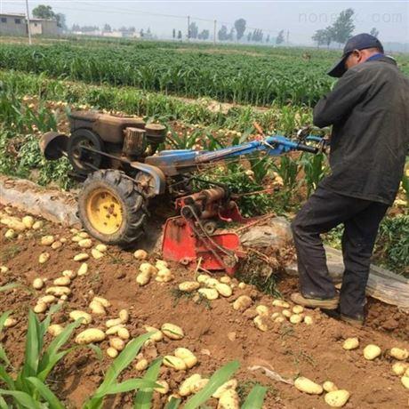 犁薯类收获机械农机 具农用红薯挖掘机