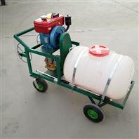 多功能汽油打药机 果园手推式喷雾器