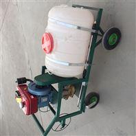 打药车手推式四轮打药机 电动喷雾器机