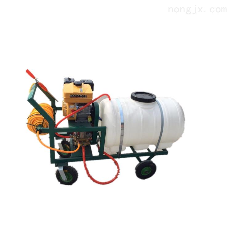 新型高压汽油打药机 手推式农药喷药机