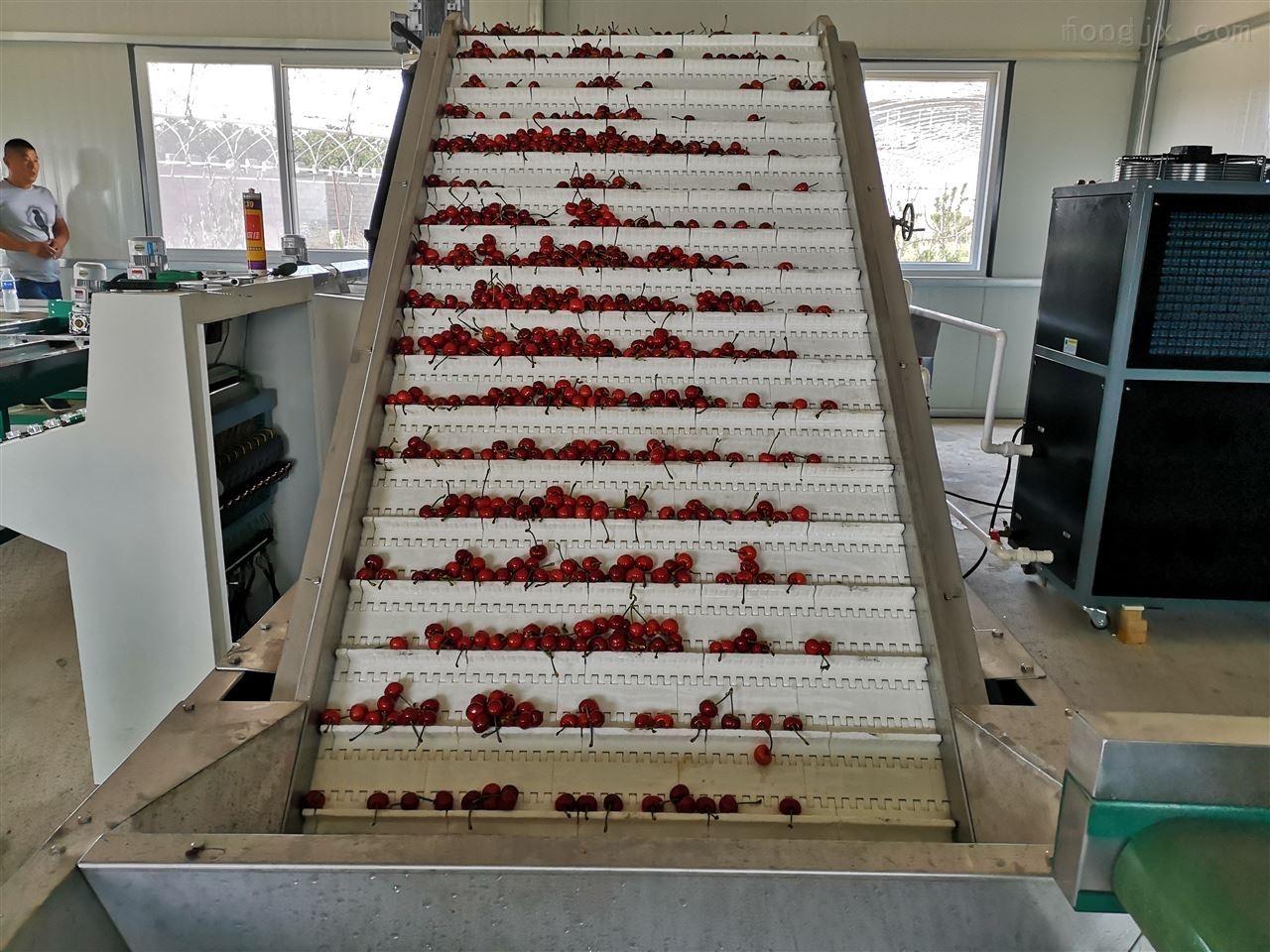 2015年樱桃分级机产品新介绍