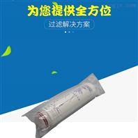 医药行业除菌电子超纯水PES聚醚砜折叠滤芯