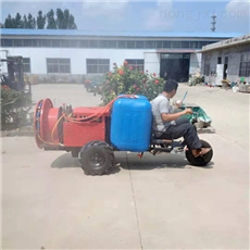 SL DYJ农用果园专用风送式打药机