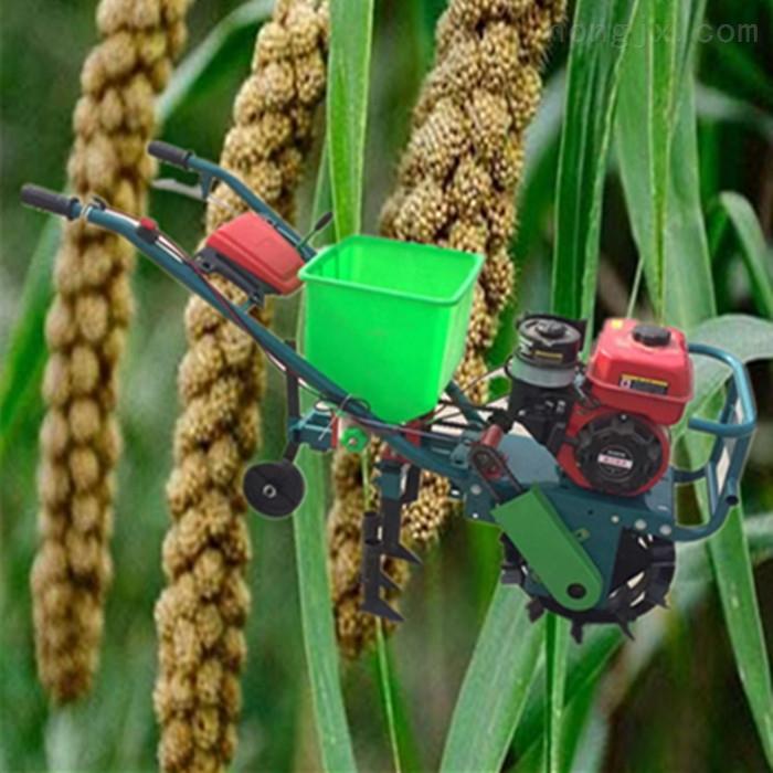 SL BZJ-汽油自走式玉米高粱施肥精播机