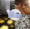 菌菇种植加湿器