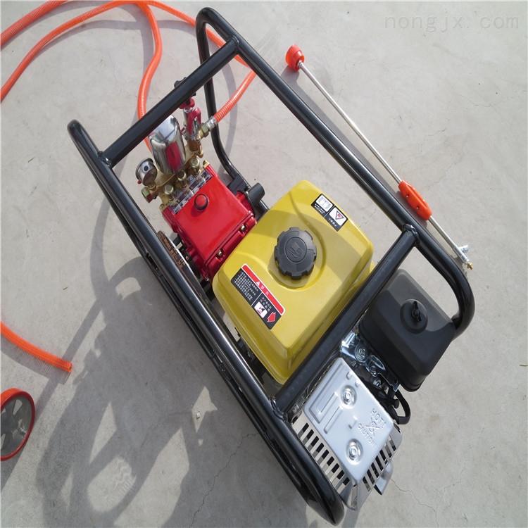 多功能的弥雾机 打药机 消毒用喷雾器