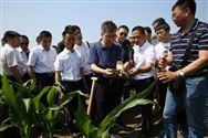 全國農技中心在吉林舉辦化肥減量增效技術培訓班