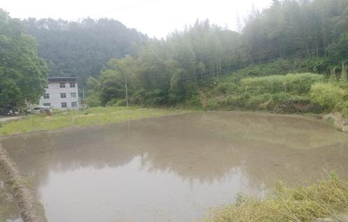 水资源可持续发展:从农业用水出发,缓解供需矛盾