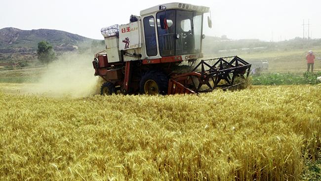 山東省部分市縣農機補貼最新動態