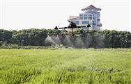让植保无人机在江苏农业病虫防治中大显身手