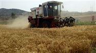 【一周看點】多項行業相關政策發布,對農民豐收節活動做出安排部署