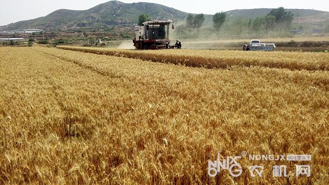 新疆将深入开展农机购置补贴项目专项稽查工作