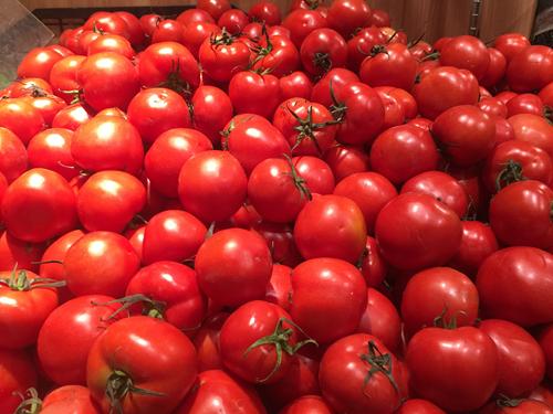 第二十二届中国农产品加工投洽会签约总额821亿元