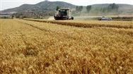 河北省关于对山东瑞科农业装备有限公司等企业进行联动处理的通知