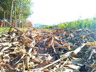 陕西省农业农村厅关于全省农机深松整地项目进展情况的通报