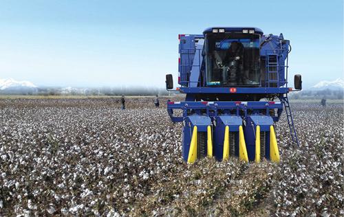 山東省棉花生產全程機械化示范基地大災之年實現高產