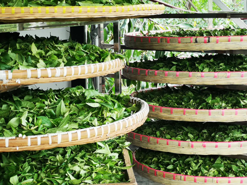 關于加快農業保險高質量發展的指導意見