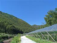 农业绿色发展先行先试支撑体系建设工作座谈会开展