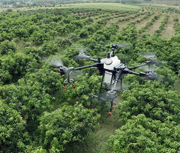 广西关于2020年优势特色农作物生产全程机械化创新示范基地建设项目安排的公示