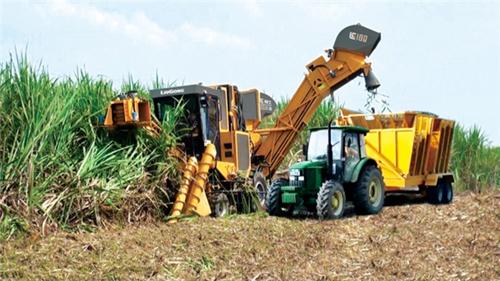 2020年高效机收糖料蔗生产全程机械化示范基地后补助项目在广西举办