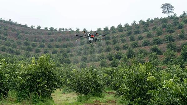 声音:战疫中,春耕备耕农机作业形势严峻