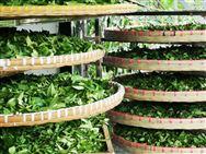 注意了,2020年甘肃省将有1000万资金培育补助高素质农民